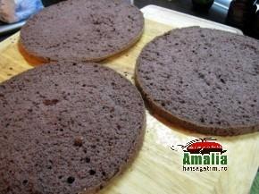 Tort cu mousse de ciocolata (Blat 2 290x217)   imagine reteta
