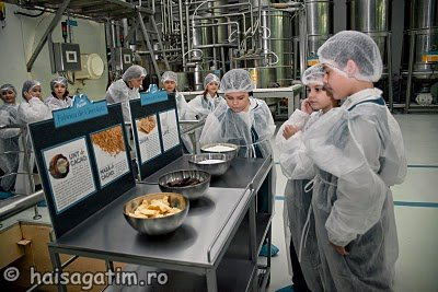 Maestrul Ciocolatescu si Fabrica de Ciocolata (Prezentare ingrediente)   imagine reteta