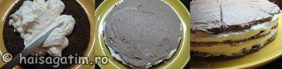 Tort cu lapte (tortlapte44)   imagine reteta