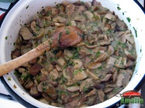 Ciuperci cu ceapa verde si leurda (ciuperci41 290x217)   imagine reteta