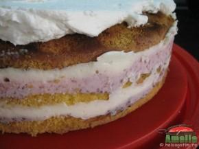 Tort cu capsuni si crema de lapte (IMG 0404 290x217)   imagine reteta