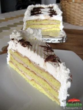 Tort cu crema de castane (tort cu crema de castane 01 290x386)   imagine reteta