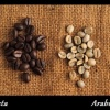 robusta-vs-arabica1