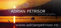 Adrian Petrisor